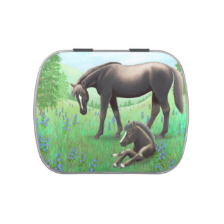 Mother Horse with Newborn Foal Candy Tin