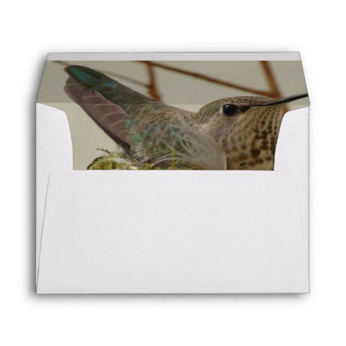 Mother Hummingbird Envelope