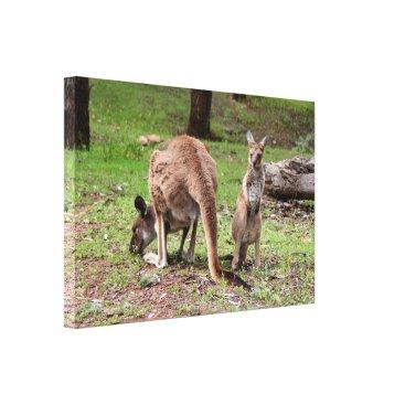 franwestphotography Mother kangaroo and joey, Australia Canvas Print