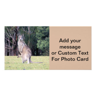 Mother Kangaroo with Baby Joey in Her Pouch Photo Card