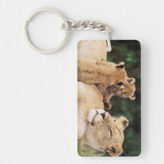 Mother lion with cubs keychain