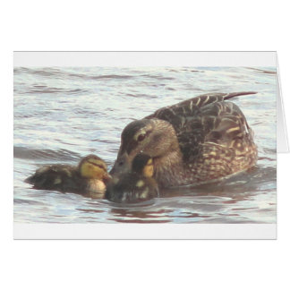 Mother Mallard & Two Babies Greeting Card