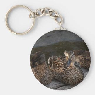 Mother Mallard & Two Children Basic Round Button Keychain
