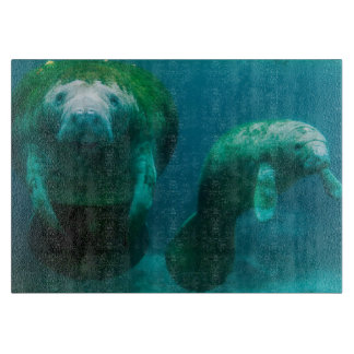Mother manatee with her calf in Crystal River Cutting Board