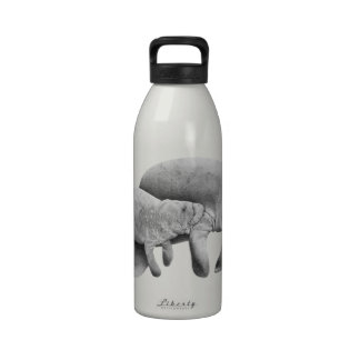 MOTHER MANATEES LOVE WATER BOTTLE