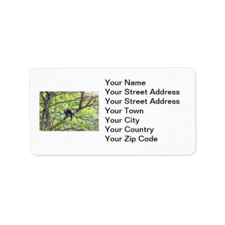 Mother Monkey and Baby in Jungle Personalized Address Labels