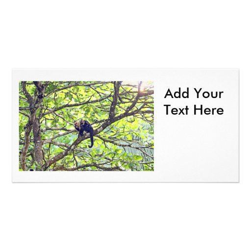 Mother Monkey and Baby in Jungle Photo Card Template