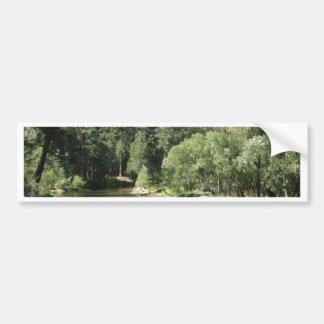 Mother Nature Bumper Sticker