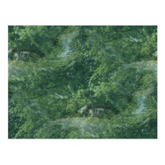 Mother Nature Fractal Postcard