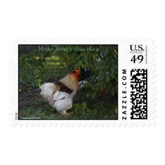 Mother Nature's alarm clock Postage