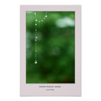 Mother Nature's Jewels 5 Poster