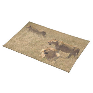 MOTHER OF LIONS CLOTH PLACE MAT