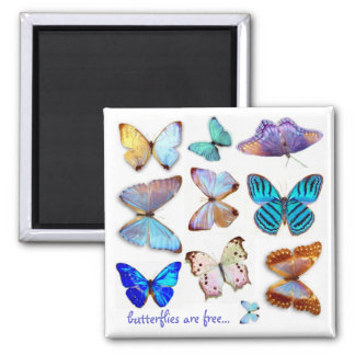 Mother of Pearl Butterflies Magnet by S Ambrose