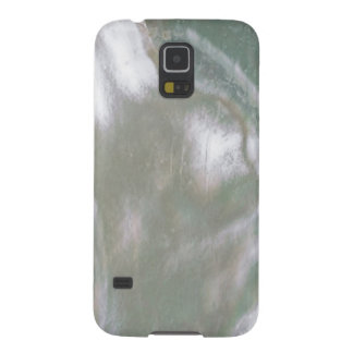 Mother of Pearl-White Galaxy S5 Case
