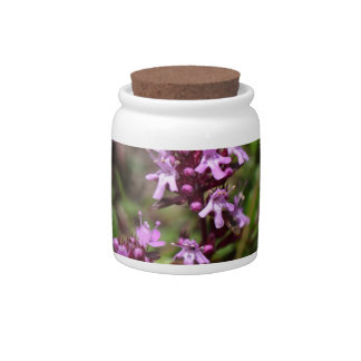 Mother of thyme flowers (Thymus praecox) Candy Dishes
