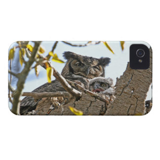 Mother Owl and Baby in Nest Blackberry Cases