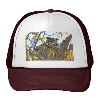 Mother Owl and Baby in Nest Trucker Hat