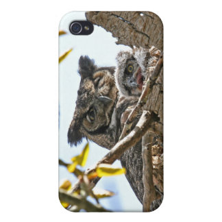 Mother Owl and Baby in Nest iPhone 4 Cases