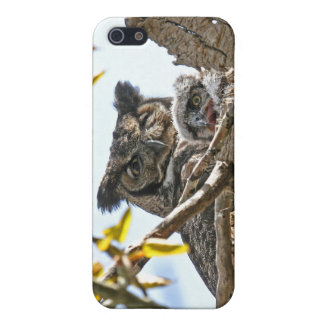 Mother Owl and Baby in Nest iPhone 5 Cases