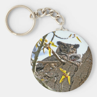 Mother Owl and Baby in Nest Key Chains