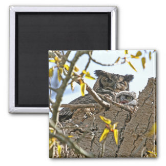 Mother Owl and Baby in Nest Refrigerator Magnet