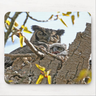 Mother Owl and Baby in Nest Mouse Pad