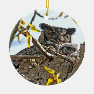 Mother Owl and Baby in Nest Ornament
