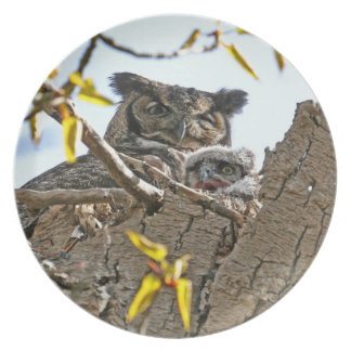 Mother Owl and Baby in Nest Plates