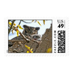 Mother Owl and Baby in Nest Postage