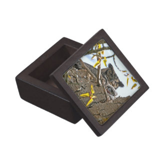 Mother Owl and Baby in Nest Premium Trinket Box