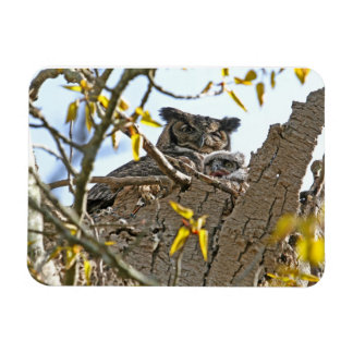 Mother Owl and Baby in Nest Rectangular Magnet