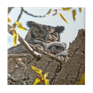 Mother Owl and Baby in Nest Ceramic Tile