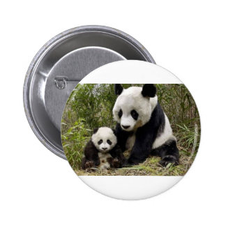 Mother Panda With Her Cub Button