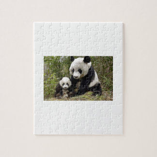 Mother Panda With Her Cub Jigsaw Puzzle