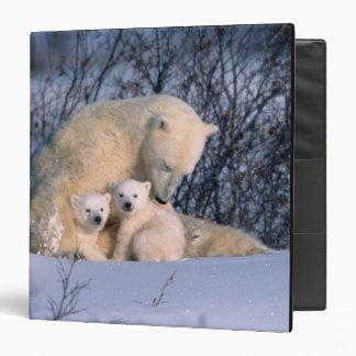Mother Polar Bear Sitting with Twins, Vinyl Binder