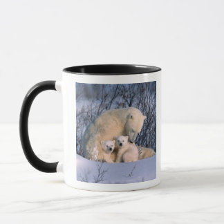 Mother Polar Bear Sitting with Twins, Mug