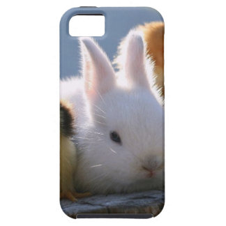 Mother Rabbit Adopts Some Chicks iPhone 5 Covers