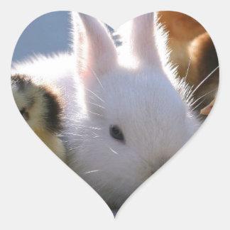 Mother Rabbit Adopts Some Chicks Heart Sticker