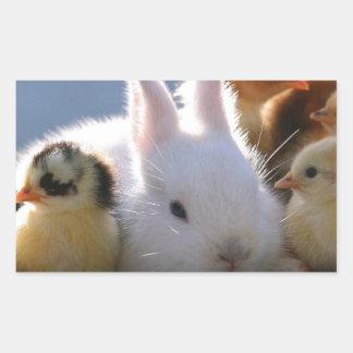 Mother Rabbit Adopts Some Chicks Rectangular Sticker