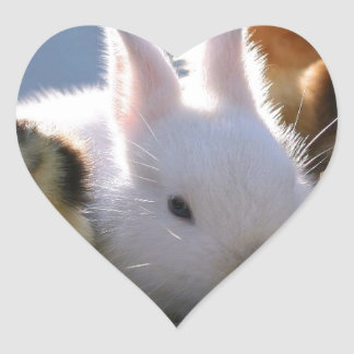 Mother Rabbit Adopts Some Chicks Heart Sticker