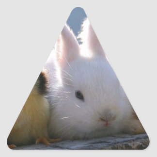 Mother Rabbit Adopts Some Chicks Triangle Sticker