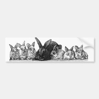 Mother rabbit and babies bumper sticker