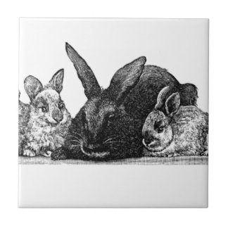 Mother rabbit and babies tiles