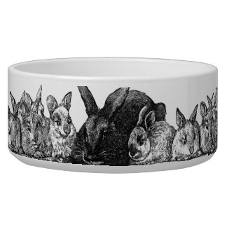 mother rabbits and babies bowl