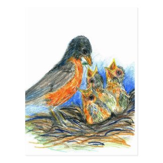 Mother Robin and Chicks - Watercolor Pencil Drawin Postcard