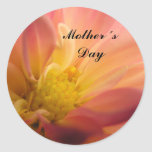 Mother´s Day #2 Classic Round Sticker