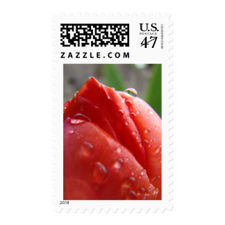 MOTHER'S DAY GIFTS 16 RED TULIPS Stamps Mothers