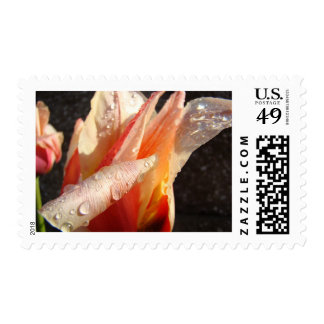MOTHER'S DAY GIFTS 19 Stamps TULIPS Tulip Flowers