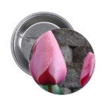 MOTHER'S DAY GIFTS 26 BUTTONS TULIPS Mom Mothers