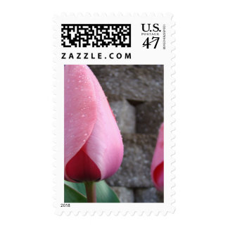 MOTHER'S DAY GIFTS 26 STAMPS PINK TULIP FLOWERS